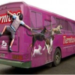 Dịch vụ cắt decal dán xe tải, xe buýt, xe ô tô